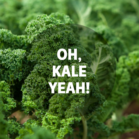 1794808 10152154824625677 563480552 n Applause For Kale, The Off The Charts Veggie!
